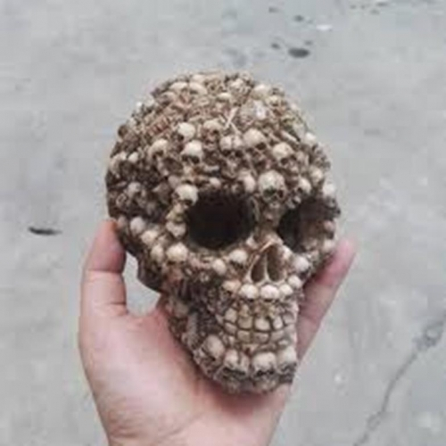 Trypophobic Skull 2