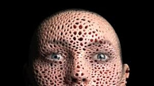 Trypophobic Face of Holes