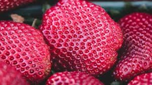 Trypophobic Strawberry