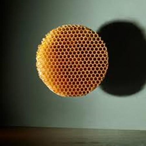 Trypophobic Hive