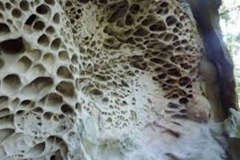 Trypophobic Sandstone