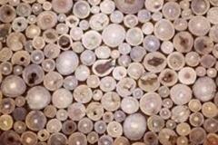 Trypophobic Wood