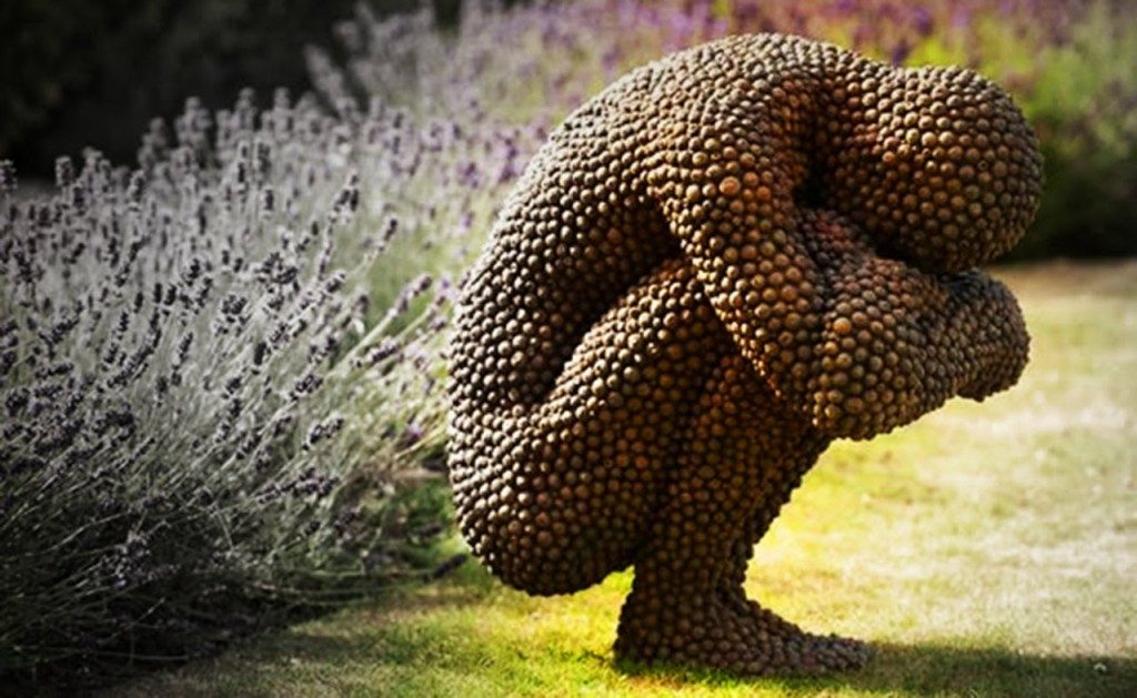 The effects of Trypophobia